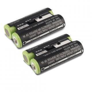 2 x Batterie Garmin Oregon