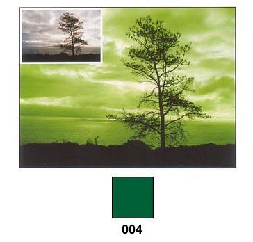 COKIN Filtre A004 Vert