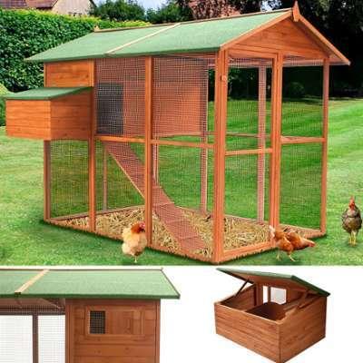Poulailler volière Duplex