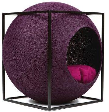 Le Cube Prune