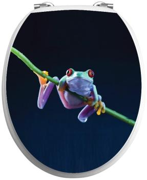 Sticker abattant wc Grenouille