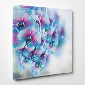 Tableau toile - Fleurs 5