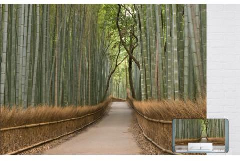 Papier peint design Bambou