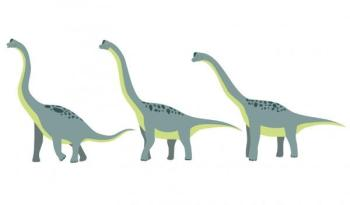 Stickers enfant 3 brachiosaures