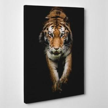 Tableau toile - Tigre