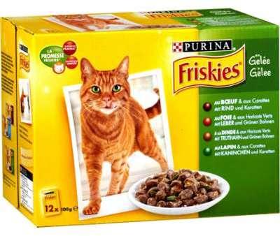 Pâtée pour chats gelée b uf