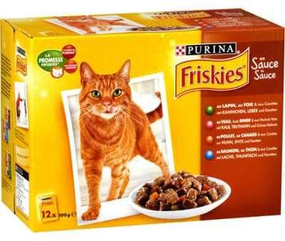 Pâtée pour chat bouchées viande