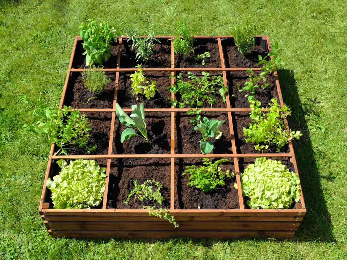 Jardipolys cabri brise soleil bois lumilam for Amenagement jardin carre