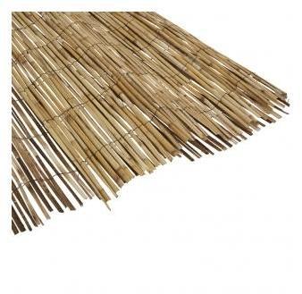 Canisse bambou naturel