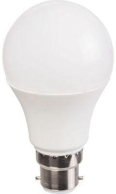 Ampoule LED Standard B22 -