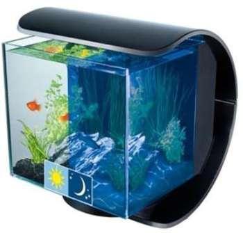 Aquarium Tetra Silhouette