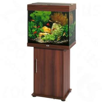 Ensemble aquarium sous-meuble