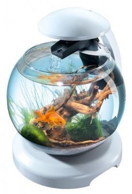 Aquarium Cascade Globe blanc