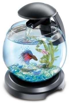 Aquarium Tetra cascade globe