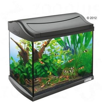 Aquarium Aqua Art Tetra 60