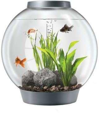 Aquarium BiOrb 60 L silver