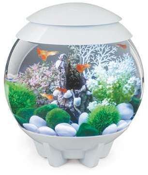 Aquarium biOrb HALO 15 L Blanc