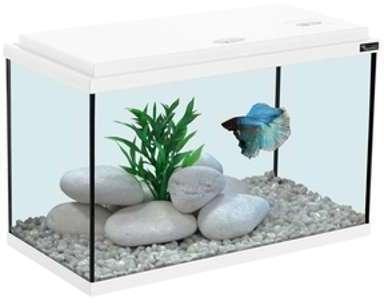 Aquarium 40x20x25 blanc