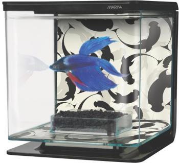 Aquarium équipé Marina pour