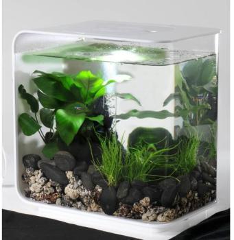 Aquarium BiOrb Flow blanc