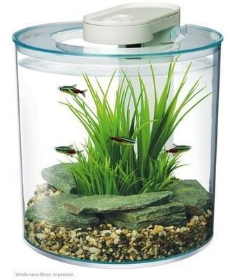 Aquarium équipé Design Marina