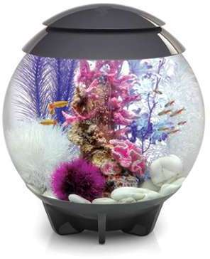 Aquarium biOrb HALO 30 L Gris