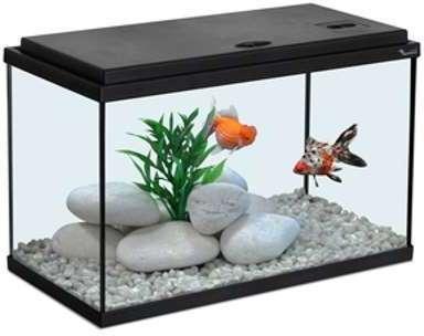 Aquarium 40x20x25 noir