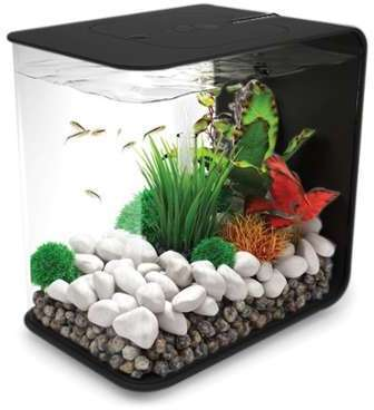 Aquarium biOrb 15L FLOW Noir