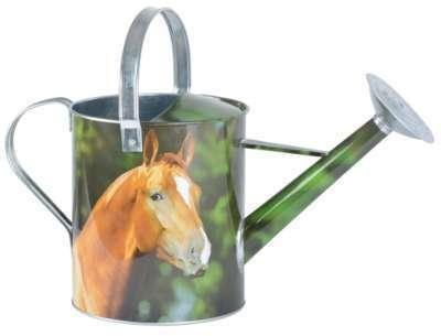 Arrosoir animaux de la ferme