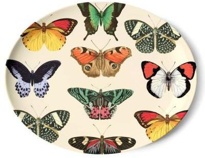 Plat Papillons Thomas Paul