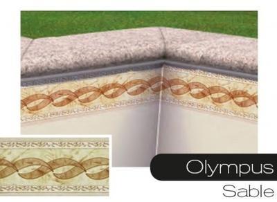 Dtails caractristiques achat du olympus x925 - Frise pour liner piscine ...