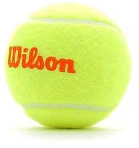 Wilson Balles de Tennis Starter