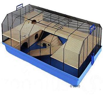 Cage Skyline Alexander - L