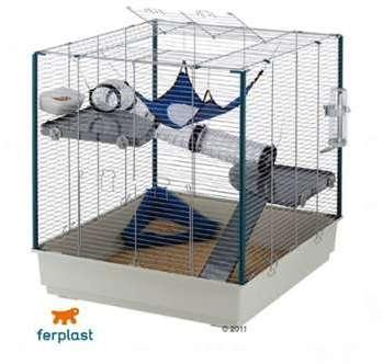 Cage pour rat et furet Furet