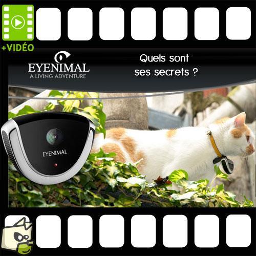 Caméra Eyenimal pour chien