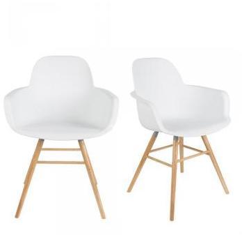 Lot de 2 fauteuils résine