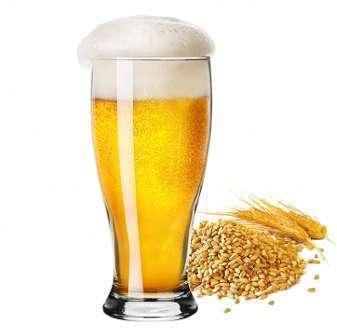 Verres à Bières Le Breyts