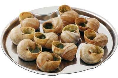 Plat pour 12 escargots ou