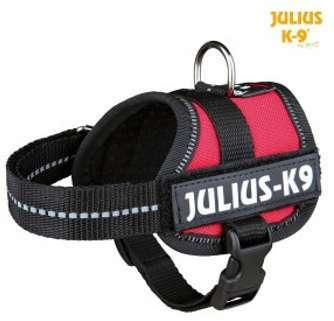 Harnais Power Julius 30-40