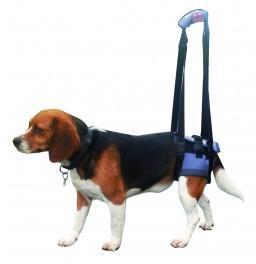 Harnais Arrière pour chien