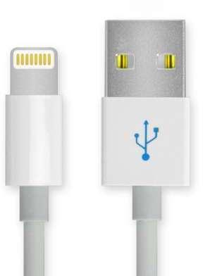 Câble USB Apple iPhone 5S