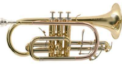 SML Paris CO870-L NATION Cornet