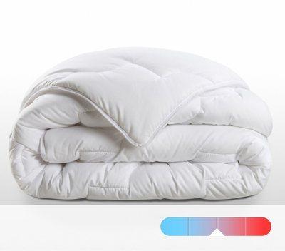 recherche thermique du guide et comparateur d 39 achat. Black Bedroom Furniture Sets. Home Design Ideas