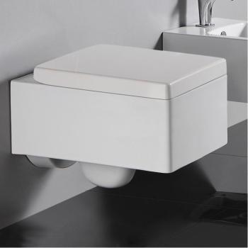 cat gorie cuvette wc page 6 du guide et comparateur d 39 achat. Black Bedroom Furniture Sets. Home Design Ideas