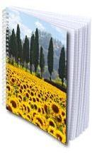 Cahier spirale A5 (petits