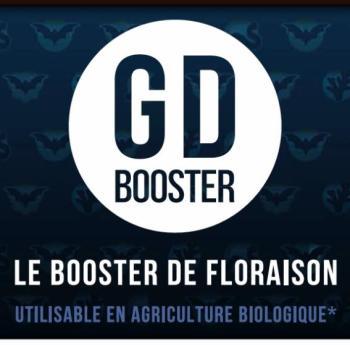 BOOSTER DE FLORAISON - PHYTO
