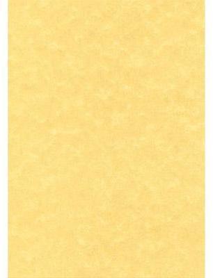 Boîte de 100 feuilles parchemin