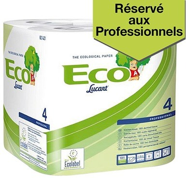 Essuie-tout Ecolucart colis