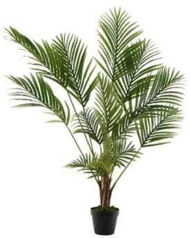 D tails caract ristiques achat du ariston arxxl 125 for Achat palmier artificiel