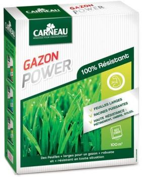Gazon haute résistance Power